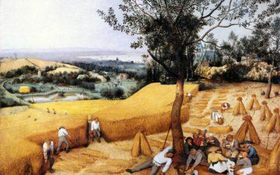 """01.08.21 – Pieter Bruegel der Ältere  – """"Die Kornernte"""" (1565)."""